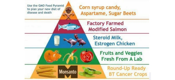 GMO-Food-Pyramid-of-Death